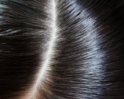 頭皮と髪のイメージ